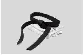 Black belt grading web page photo