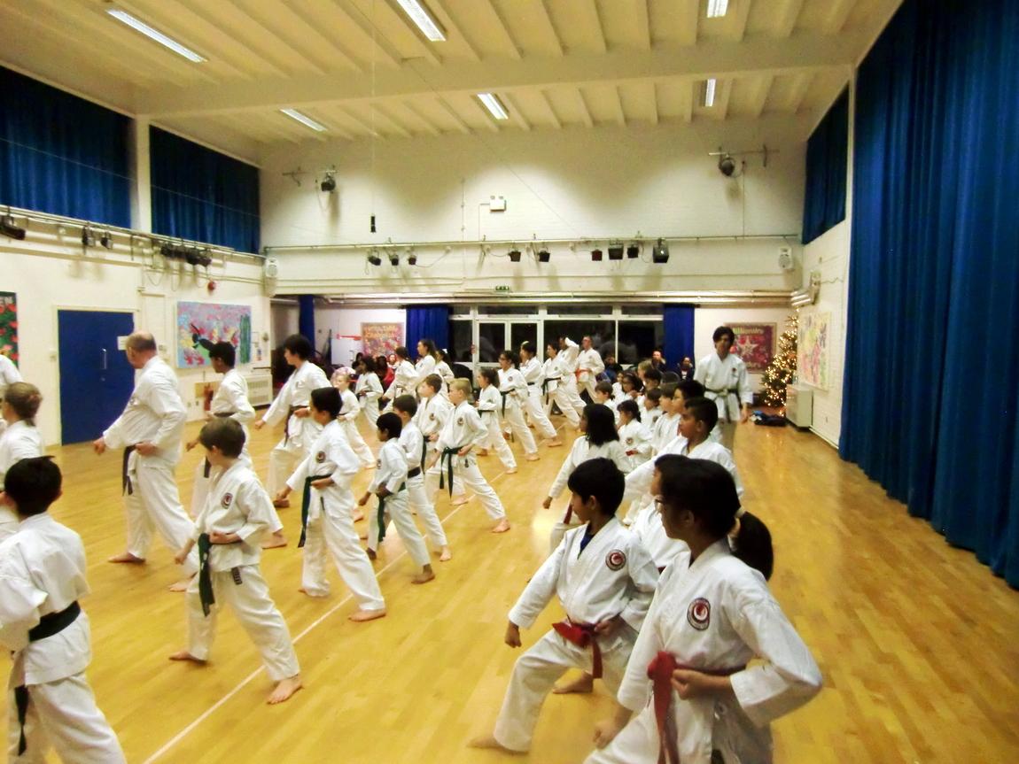 Bromley & South East London JKA Karate Club, Grading December 2017